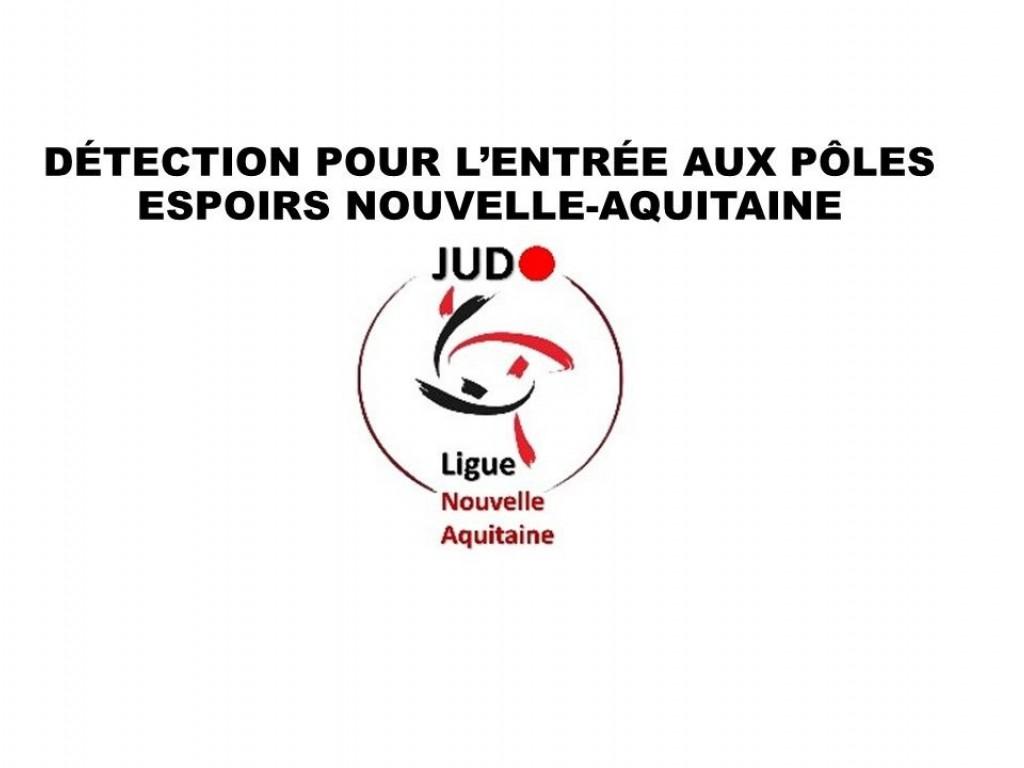 Image de l'actu 'DETECTION POUR L'ENTRÉE AUX POLES ESPOIRS'