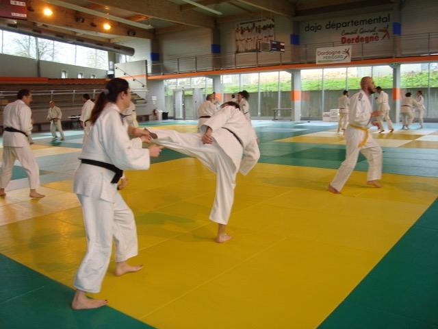 Animation Jujitsu 25-01-2020 C-CHAMIERS